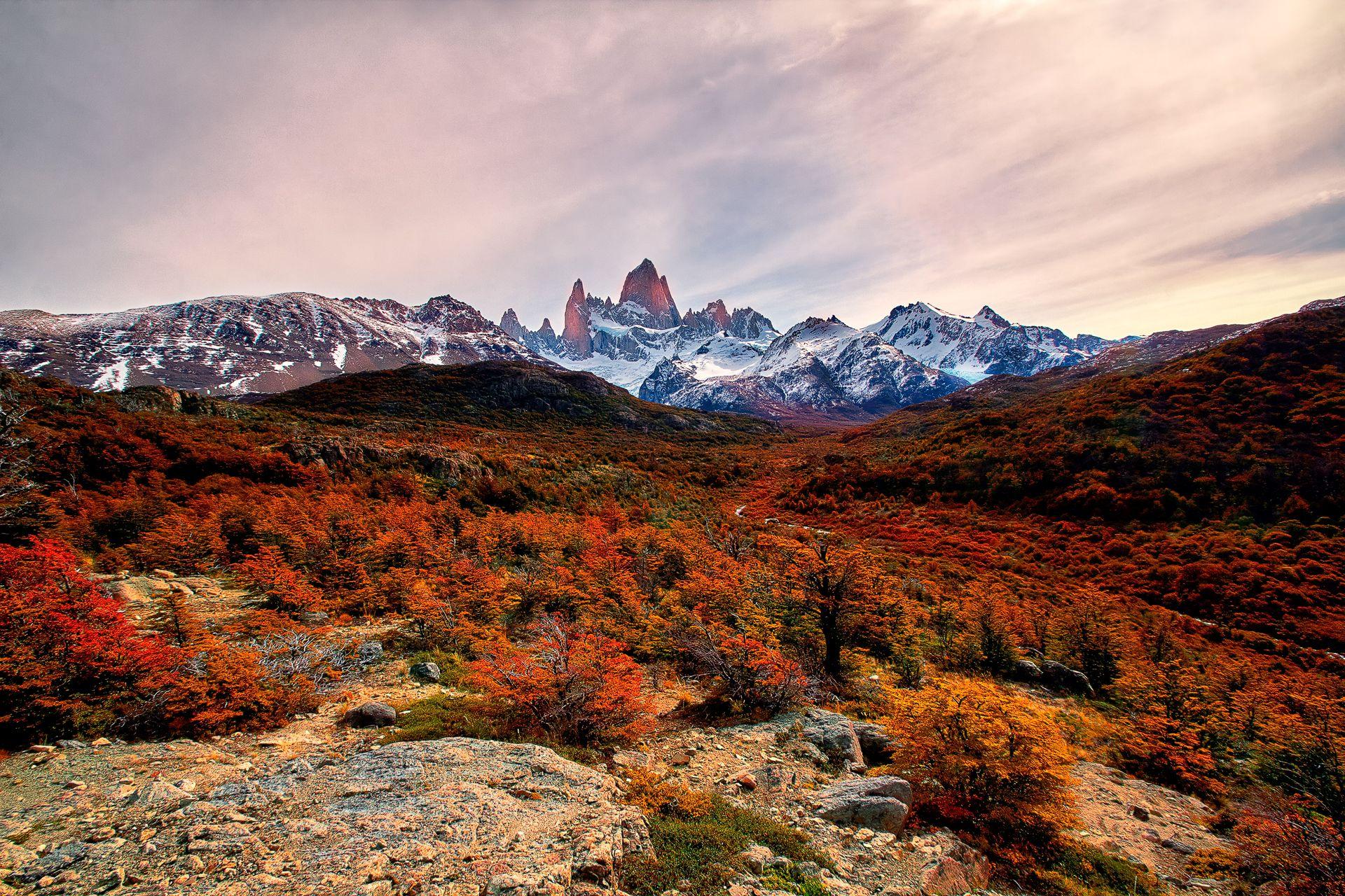 Autumn Colors, Mount Fitz Roy, el chalten, Los Glaciares National Park, Patagonia, Argentina / Chile, andes, earthporn, landscape