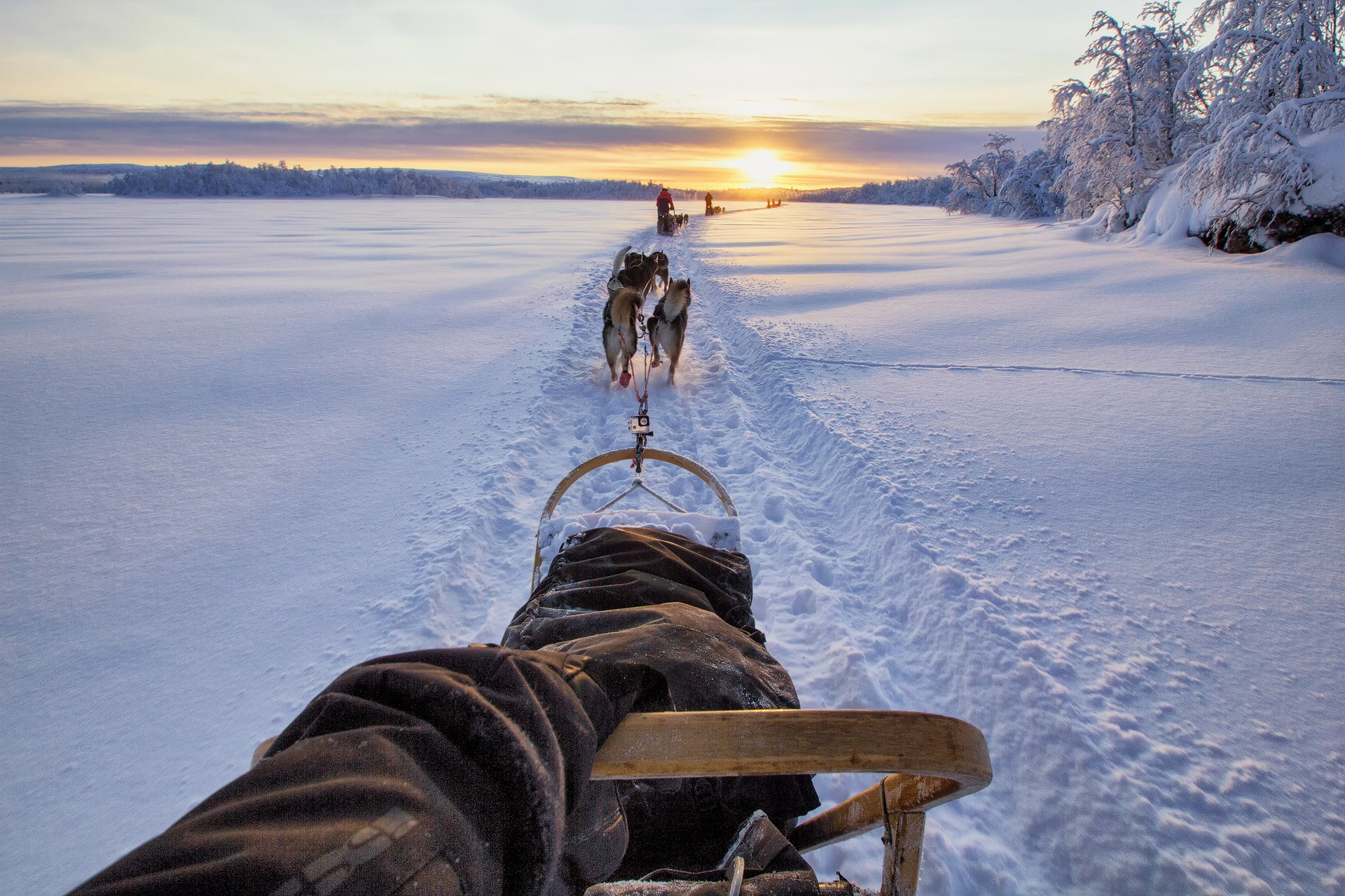 Sledding, mushing, finland, husky, husky tour, snow, winter, lapland, to the sun, cold, adventure tour, abenteuer tour, sled, schlitten