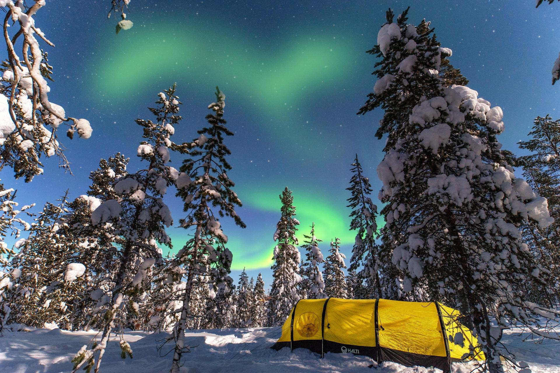 finland, finnish lappland, finnland, snow, tent, tent below aurora, tent in woods, zelt unter nordlchtern, aurora, northern lights,